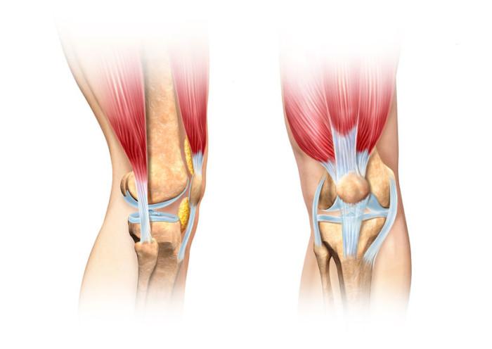 Patellofemoral Pain Syndrome - Zamst Blog